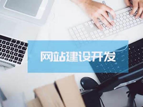 专业的企业网站制作公司